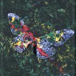[Album] DIR EN GREY – TOUR16-17 FROM DEPRESSION TO (Flac/RAR)