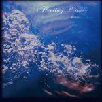 [Single] Schwarz Stein – Fleeting Beauty (MP3/RAR)