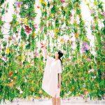 [Single] 高橋英明 teamLab – ALL SINGLE COMPILATIONS (2017.03.15/MP3/RAR)