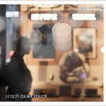 [Single] siraph – quiet squall (2016.12.21/MP3/RAR)