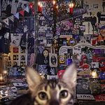 [Album] BUCK-TICK – CATALOGUE 1987-2016 (2017.09.20/MP3/RAR)