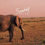 [Single] said – Sunday (2017.12.06/MP3+Flac/RAR)