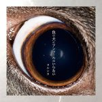 [Album] ヨルシカ – 負け犬にアンコールはいらない (2018.05.09/MP3/FLAC/ZIP)