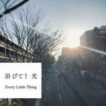 [Single] Every Little Thing – 浴びて!光 (2018.05.23/AAC/RAR)