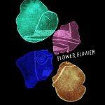 [Single] FLOWER FLOWER – 月 -band acoustic ver.- (2019.01.30/AAC/RAR)