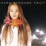 [Album] Chara – Strange Fruits (1999.03.17/MP3/RAR)