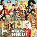 [Album] DJ Elite – Blackbird (2019.05.22/MP3/RAR)