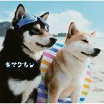 [Album] キマグレン – Alive (2010.07.14/MP3/RAR)