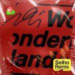 [Single] iri – Wonderland (Seiho Remix) (2019.10.23/MP3+FLAC/RAR)