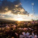 [Single] 絢香 (ayaka) – 道しるべ (2020.03.04/FLAC 24bit Lossless + AAC/RAR)