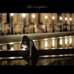 [Single] Aimer – Live at anywhere (2015.06.05/FLAC 24bit/RAR)