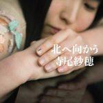 [Album] 寺尾紗穂 (Saho Terao) – 北へ向かう (2020.03.04/FLAC + MP3/RAR)