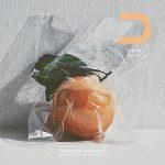 [Single] Da-iCE – Citrus (2020.11.27/MP3/RAR)