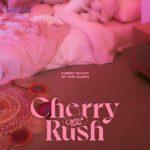 [Single] Cherry Bullet – Cherry Rush (2021.01.20/FLAC 24bit + MP3/RAR)