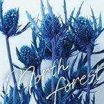 [Single] HY – North Forest (2021.01.29/FLAC + MP3/RAR)