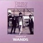 [Album] WANDS – complete of WANDS at the BEING studio (2002.08.25/MP3/RAR)