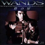 [Album] WANDS – 時の扉 (1993.04.17/MP3/RAR)