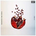 [Single] STEREO DIVE FOUNDATION – OMEGA (2021.04.05/MP3 + FLAC/RAR)